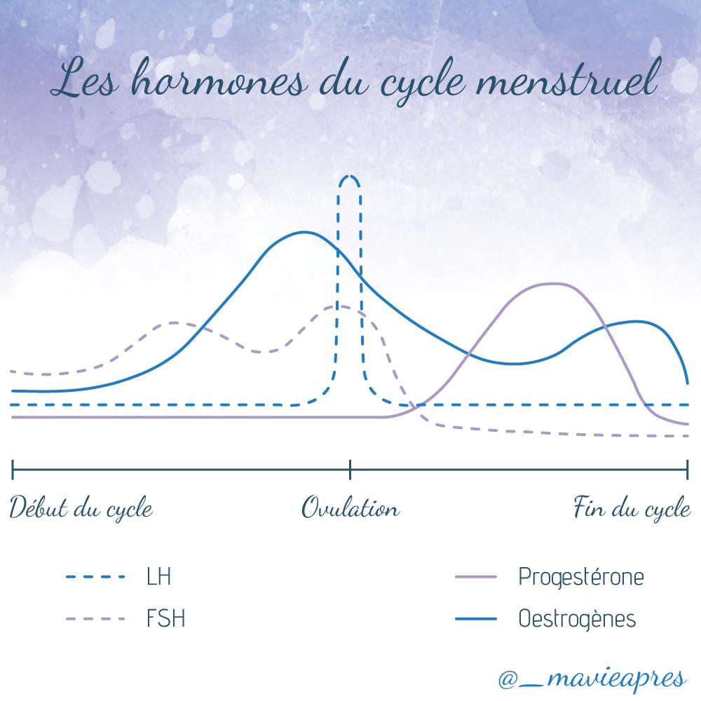 Évolution de la production des différentes hormones au cours du cycle menstruel